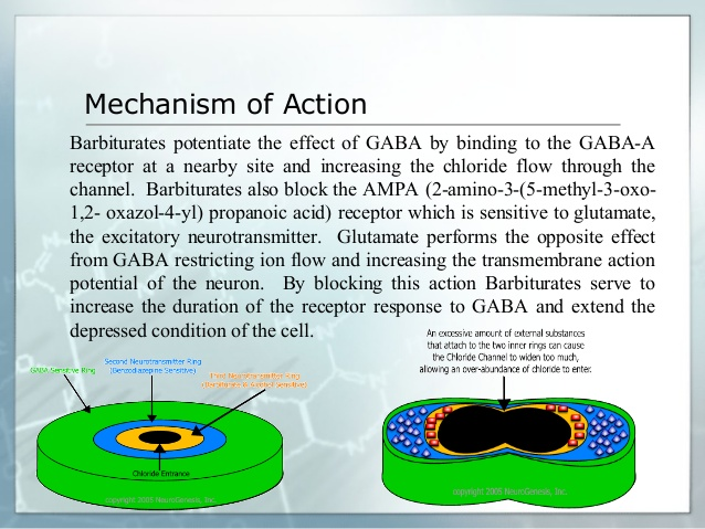 Themechanism of action of barbiturate