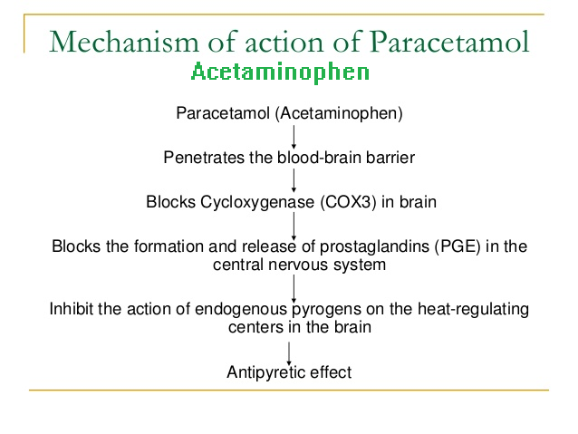 The mechanisms of action of acetaminophen